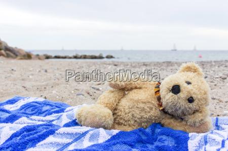 a, teddy, bear, lies, on, a - 15215563