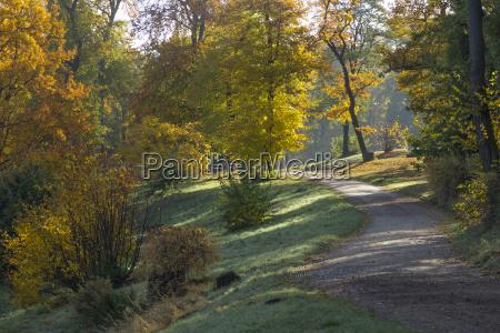autumnal parkweg
