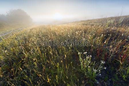 autumn evening in the farmland