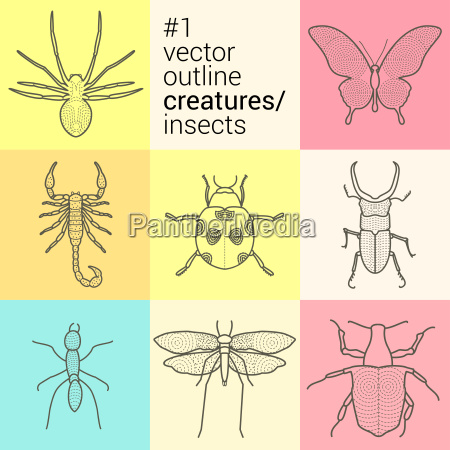 set outline planimetric contour vector insects