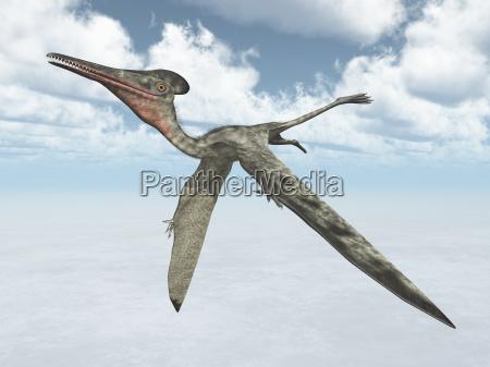 flying dinosaur pterodactylus