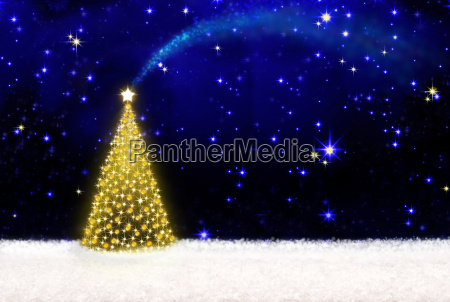 christmas tree and starry sky
