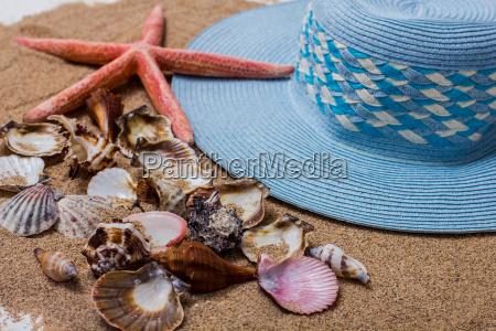summer travel vacation