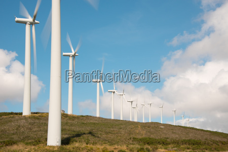 wind turbines in the wind farm