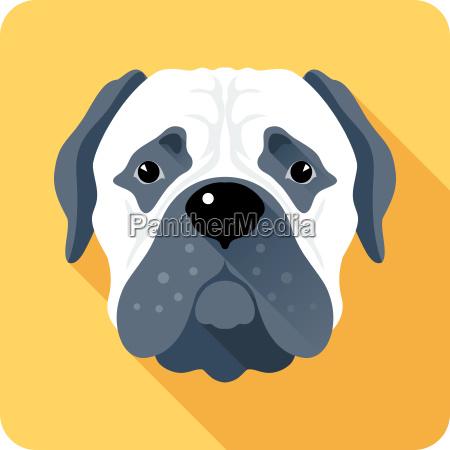 dog bullmastiff icon flat design