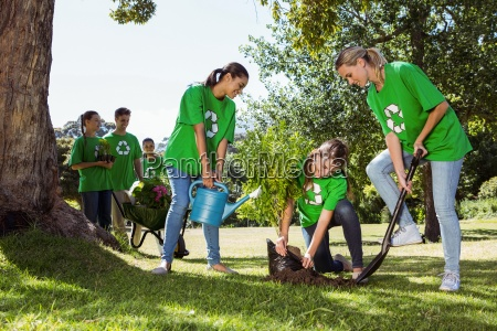 environmental activists planting a tree in