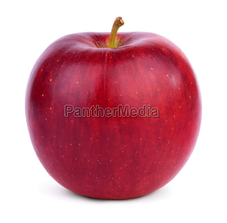 ripe round red apple with a