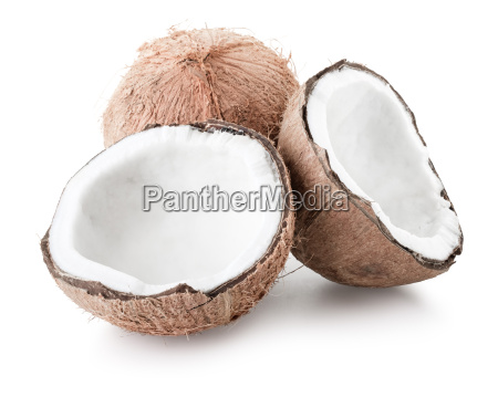 coconut over white background