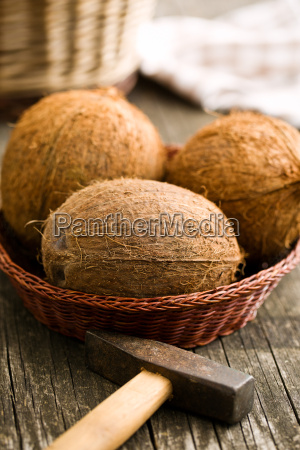 whole coconuts and hammer