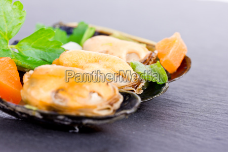 cooked, mussels - 15784798