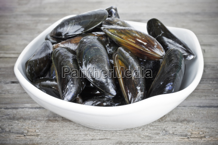 mussels - 15784788