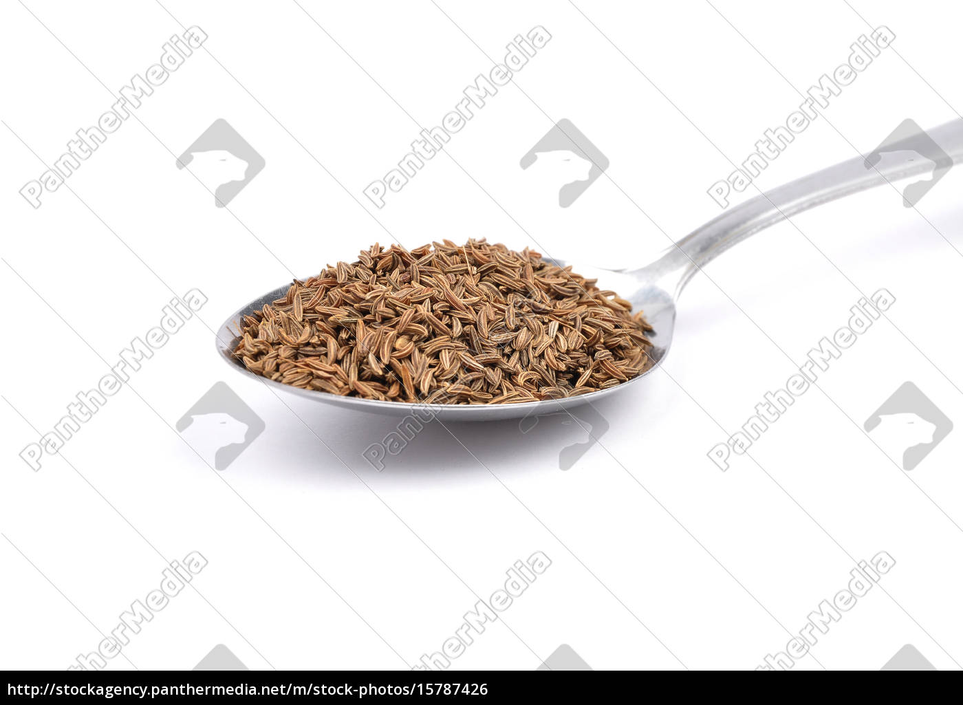 caraway, seed - 15787426