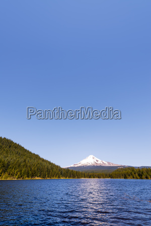 mt., hood, and, trillium, lake, vertical - 15788526