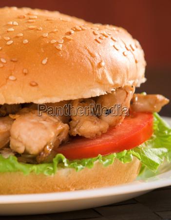 hamburger - 15794851