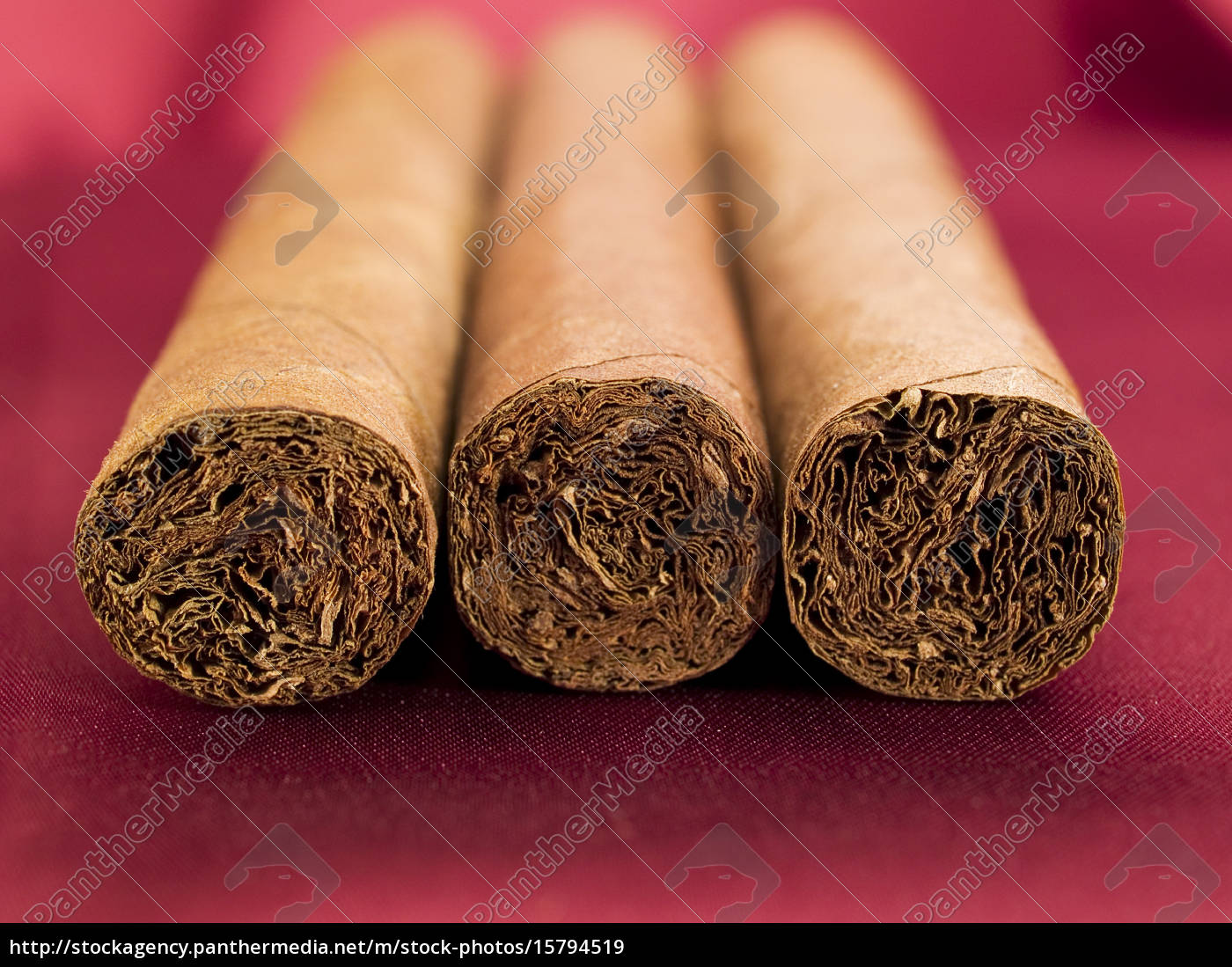 three, cigars, on, red, satin, three, cigars - 15794519