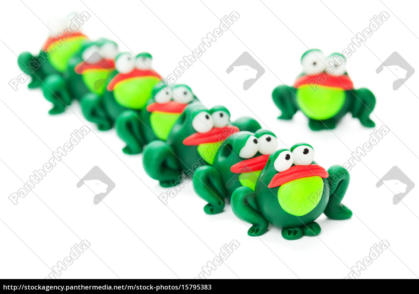 frogs - 15795383