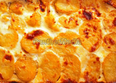 potato, casserole, potato, casserole, potato, casserole, potato, casserole - 15795309