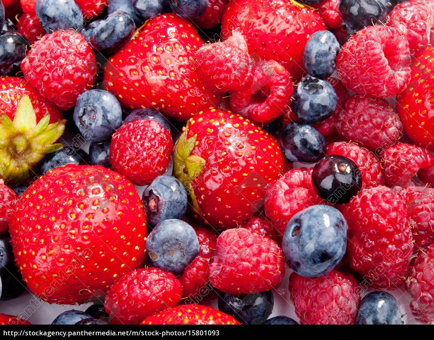 berries, berries, berries, berries - 15801093