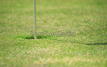 golf - 15801745