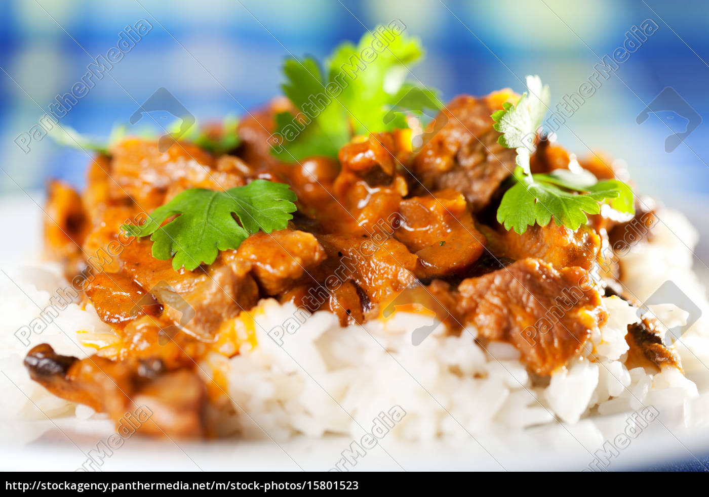 pork, curry, with, rice, pork, curry, with - 15801523