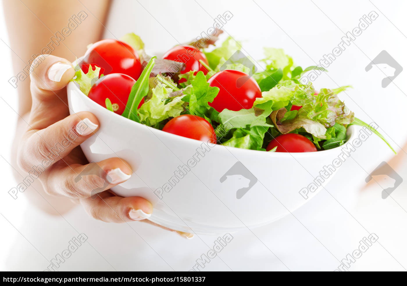 salad, bowl, in, woman, hands - 15801337