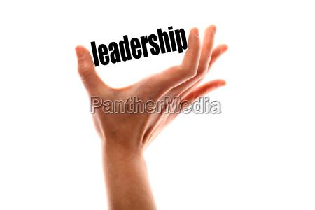 smaller leadership concept
