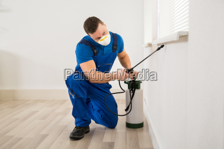 worker spraying pesticide on window corner