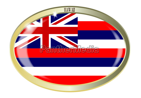 hawaii state flag oval button