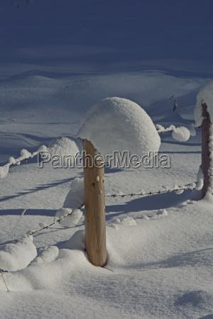 fencepost winter