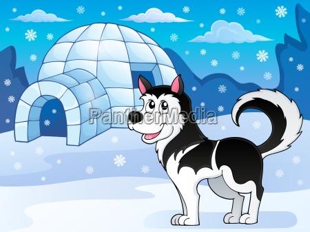 husky dog theme image 3