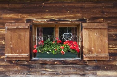 cottage window with geraniums