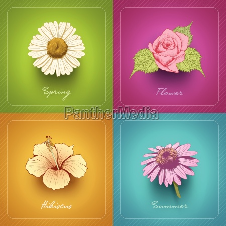 vector modern card design collection with