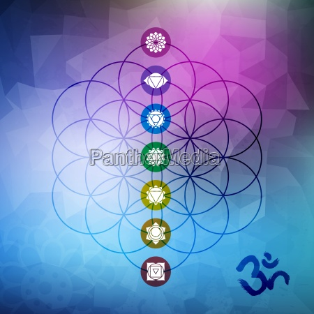sacred geometry flower of life with