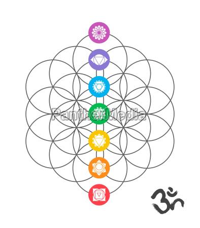 colorful chakra icons on sacred geometry