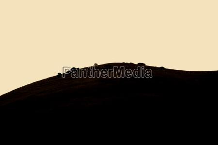 hill in carmel