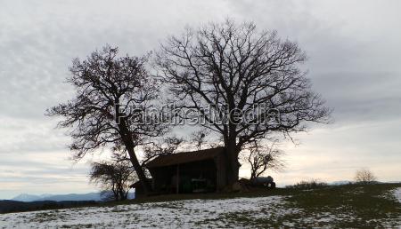 winter counter light dismal barn silhouette