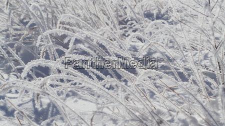 winter snowy ice frost crystal blanket