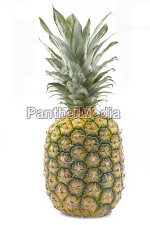 whole pineapple on white background