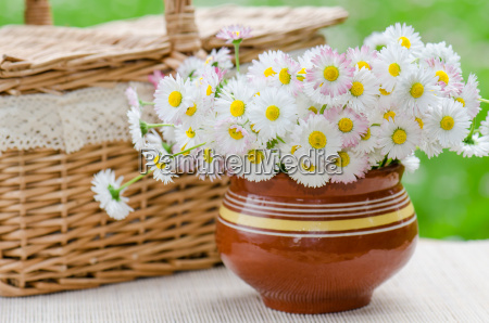 a bouquet of daisies in a