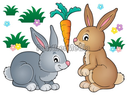 rabbit, topic, image, 1 - 16072889