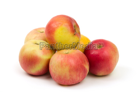 fresh juicy red and yellow apples