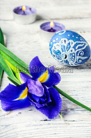 decoration for the easter holiday