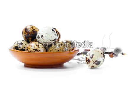 fresh quail egg in the bowl