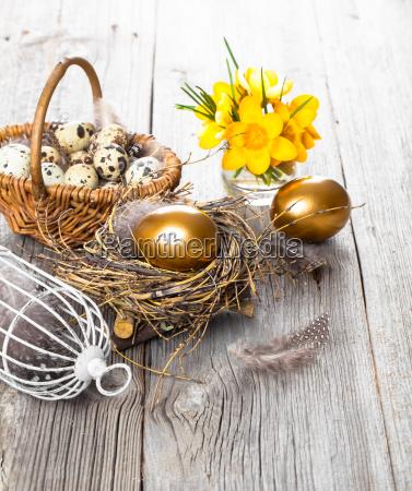 golden eggs of chickens in nest