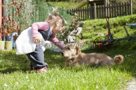 baby touching a dog