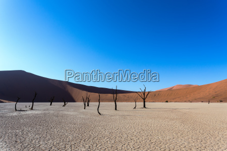 hidden vlei in namib desert