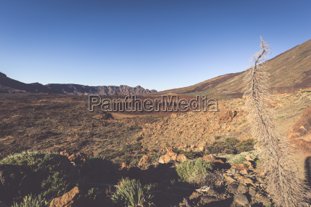 landscape in teide national park canary