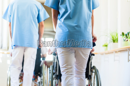 caregiver push seniors in wheelchairs by
