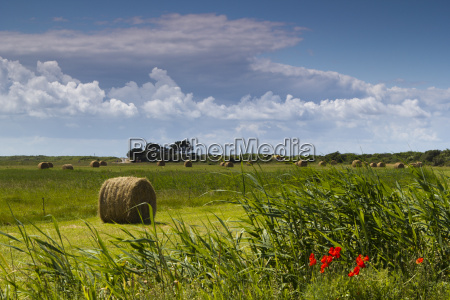 straw bales on a field in