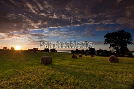 straw bales in a field in